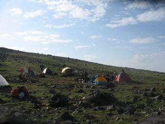 Ararat (6)